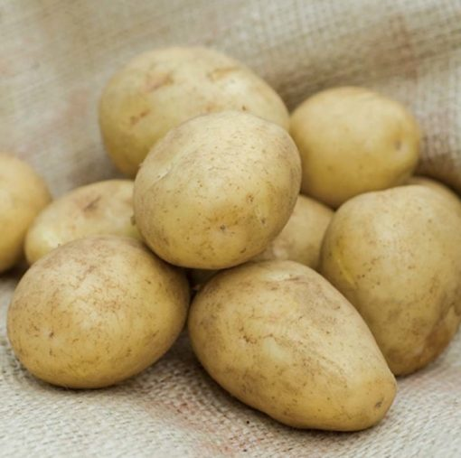 Golden Wonder Maincrop 2Kg| Seed Potatoes | Nationwide Delivery