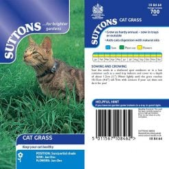 Grasses Seed - Cat Grass by Suttons Seeds| 108464| Nationwide Delivery On Flower Seeds