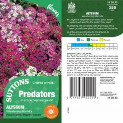 Alyssum Predator Seeds - Wandering Star Mix by Suttons Seeds| 142032| Nationwide Delivery On Flower Seeds