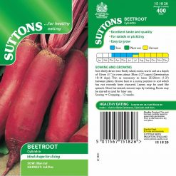 Beet Cylindra by Suttons Seeds  151820  Nationwide Delivery