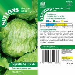 Lettuce Iceberg Match by Suttons Seeds| 168560| Nationwide Delivery