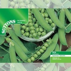 Pea Ambassador by Suttons Seeds| 190013| Nationwide Delivery