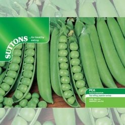 Pea Hurst Greenshaft by Suttons Seeds| 192081| Nationwide Delivery