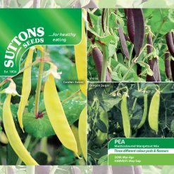 Pea Mangetout Multicoloured Mix by Suttons Seeds| 193010| Nationwide Delivery