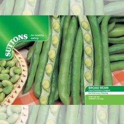 Broad Bean Giant Exhibition Longpod by Suttons Seeds| 194090| Nationwide Delivery